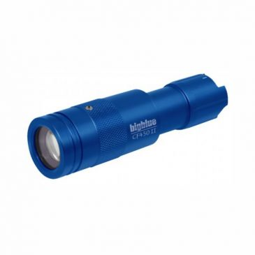 Big Blue 450-Lumen Adjustable Beam